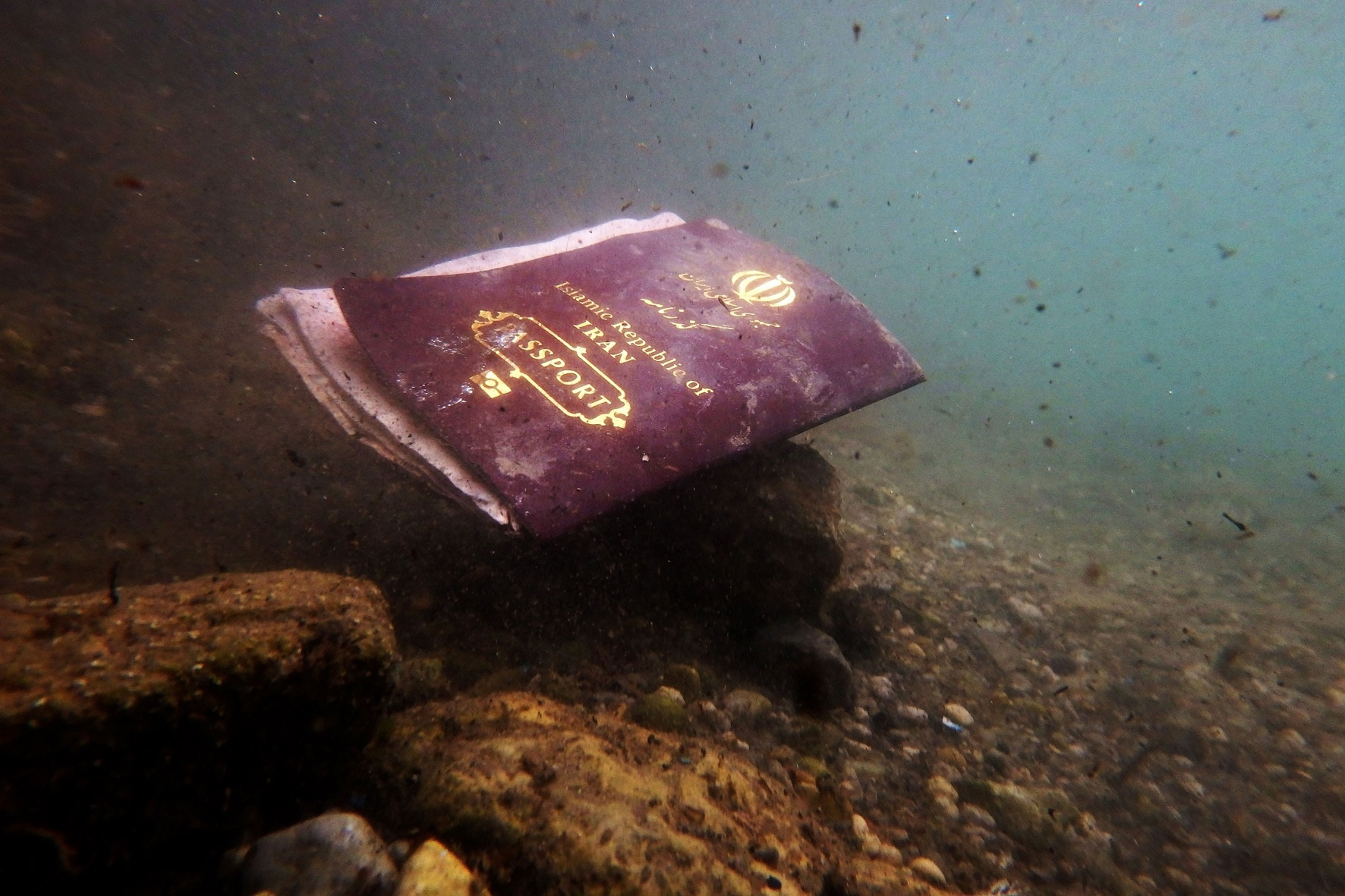 Passport (c) Under the sea